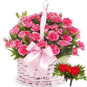 카네이션바구니(꽃행복340호)